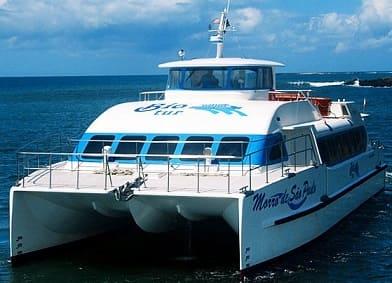 Catamarã Horarios